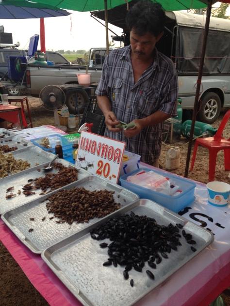 taštička opražených švábíků za 20 bhatů (takových asi 15 korun)