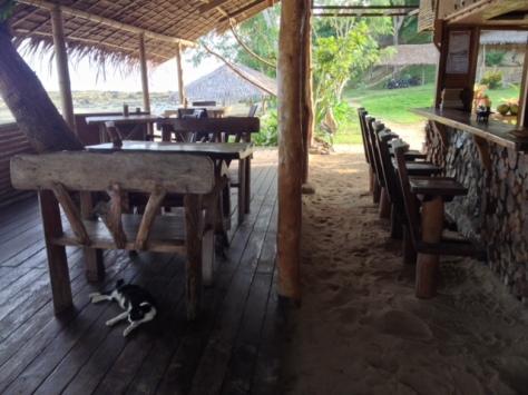Recepce - bar - restaurace