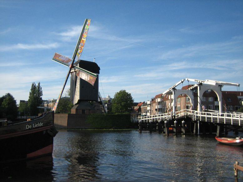 Leiden6